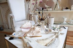 Interior stylist's table with seashells, brushes and animal bonesの写真素材 [FYI03617714]