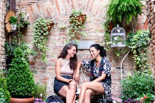 Friends enjoying peaceful corner with plants, Citt・della Pieve, Umbria, Italyの写真素材 [FYI03618004]