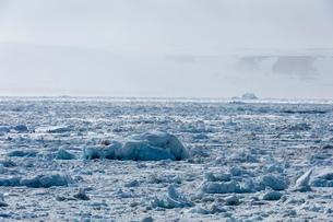 Sea ice and misty coastal landscape, Wahlenberg fjord, Nordaustlandet, Svalbard, Norway.の写真素材 [FYI03618967]
