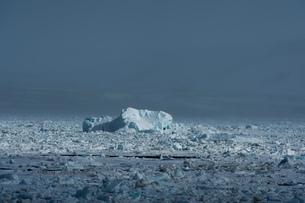 Arctic ocean sea ice and coastal mist, Wahlenberg fjord, Nordaustlandet, Svalbard, Norway.の写真素材 [FYI03618973]