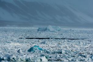 Arctic ocean sea ice and coastal mist, Wahlenberg fjord, Nordaustlandet, Svalbard, Norway.の写真素材 [FYI03618974]