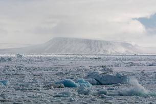 Arctic ocean sea ice and snowy coastal landscape, Wahlenberg fjord, Nordaustlandet, Svalbard, Norwayの写真素材 [FYI03618975]
