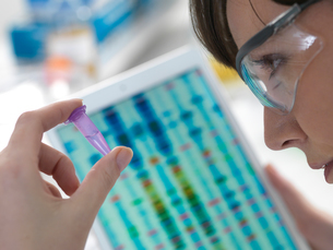 Female scientist examining DNA sample in eppendorf tube with results on digital tablet in laboratoryの写真素材 [FYI03620879]