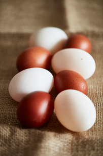 White and brown eggs on linen clothの写真素材 [FYI03621007]