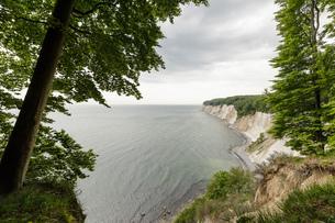 Landscape with coastal chalk cliffs, Jasmund National Park, Sassnitz, Rugen, Mecklenburg-Vorpommern,の写真素材 [FYI03621037]