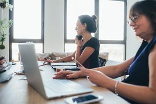 Businesswomen using smartphone and working in loft officeの写真素材 [FYI03621448]