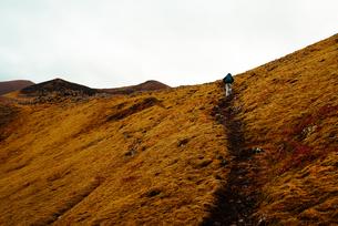 Tourist hiking up hill, Reykjav勛, Gullbringusysla, Icelandの写真素材 [FYI03621805]