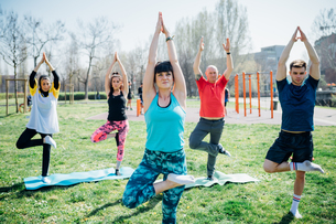 Calisthenics class at outdoor gym, women and men practicing yoga tree poseの写真素材 [FYI03622992]