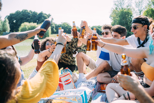 Group of friends relaxing, toasting soft drinks at picnic in parkの写真素材 [FYI03623691]