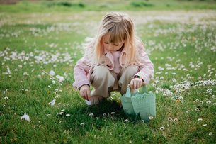 Cute girl in field with basket picking flower petal, Arezzo, Tuscany, Italyの写真素材 [FYI03623784]