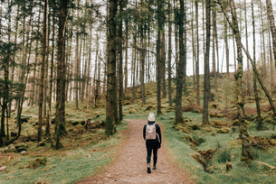 Trekker walking in Trossachs National Park, Canadaの写真素材 [FYI03623838]