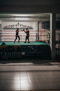 Boxer sparring with trainer in boxing ringの写真素材 [FYI03624333]