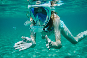 Underwater view of girl snorkelling, looking at fish, Limnos, Khios, Greeceの写真素材 [FYI03624381]