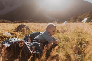 Baby exploring wilderness, Wanaka, Taranaki, New Zealandの写真素材 [FYI03624976]