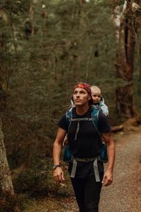 Hiker with baby exploring forest, Queenstown, Canterbury, New Zealandの写真素材 [FYI03625032]