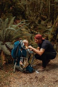 Hiker with baby exploring forest, Queenstown, Canterbury, New Zealandの写真素材 [FYI03625033]