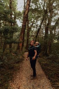 Hiker with baby exploring forest, Queenstown, Canterbury, New Zealandの写真素材 [FYI03625043]