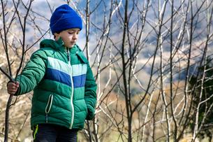 Boy exploring national park, Llanaber, Gwynedd, United Kingdomの写真素材 [FYI03625221]
