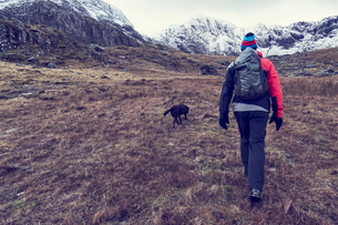 Male hiker and dog hiking up rugged landscape with snow capped mountains, rear view, Llanberis, Gwynの写真素材 [FYI03625409]