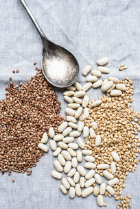 Still life of dessert spoon with lima beans, pearl barley and hemp seeds, overhead viewの写真素材 [FYI03625913]