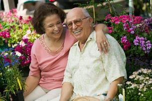 Senior Couple sitting among flowers at plant nursery  portの写真素材 [FYI03626837]