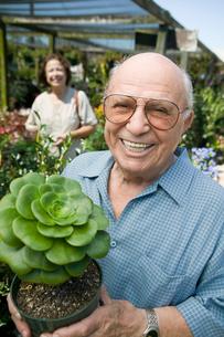 Senior man standing in plant nursery holding cactus plantの写真素材 [FYI03626844]