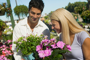 Couple Shopping for flowers in plant nurseryの写真素材 [FYI03626848]