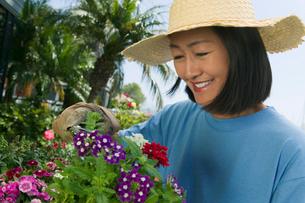 Woman in straw hat clipping flowers in gardenの写真素材 [FYI03627362]