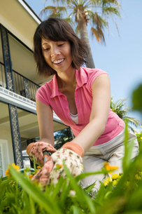 Woman gardening  (low angle view)の写真素材 [FYI03627368]