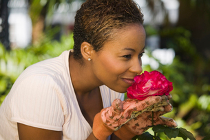 Woman smelling rose flower in garden  (close-up)の写真素材 [FYI03627384]
