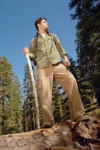 Hiker on log in forestの写真素材 [FYI03627634]