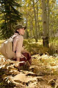 Female hiker resting in forestの写真素材 [FYI03627637]