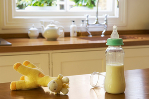 Stuffed animal and baby bottle on Kitchen Counterの写真素材 [FYI03629209]