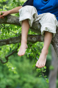 Young boy sitting on tree branch  low section  close up ofの写真素材 [FYI03629683]