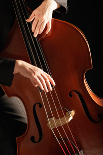 Man Playing Double Bass  close up of handsの写真素材 [FYI03629983]