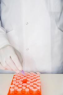Lab worker adding violet liquid to test tubes in orange trの写真素材 [FYI03630299]