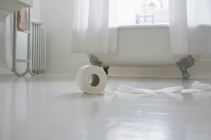 Toilet paper roll on bathroom floorの写真素材 [FYI03630353]
