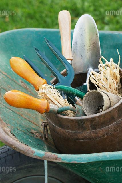 Gardening Toolsの写真素材 [FYI03630622]