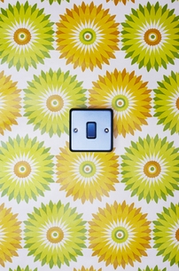 Light switch on flowery wallpaperの写真素材 [FYI03630718]
