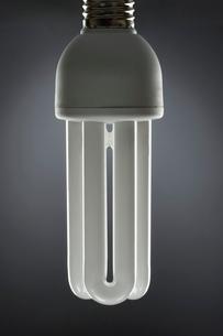 Energy saving light bulb  close up  in studioの写真素材 [FYI03630741]