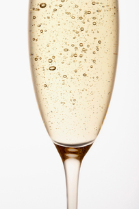 Glass of Champagne  close up  in studioの写真素材 [FYI03630746]