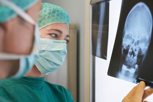 Radiologists Examining X-Ray of skull  close upの写真素材 [FYI03630856]