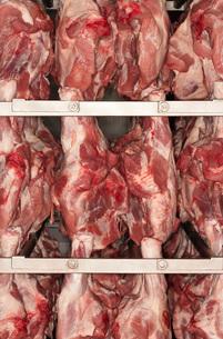 Raw Meat Hanging on Rackの写真素材 [FYI03631122]
