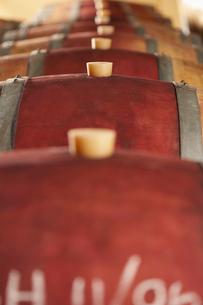 Wine casks lying down in order  selective focusの写真素材 [FYI03631810]