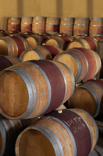 Wine casks  in order  standing and lying downの写真素材 [FYI03631812]