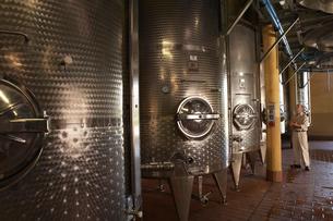 Man examination wine vatsの写真素材 [FYI03631824]