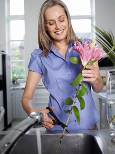 Mid-adult woman rinsing and cutting flowers in kitchen sinの写真素材 [FYI03633246]