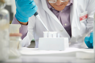 Scientist filling test tubes with pipette in laboratoryの写真素材 [FYI03633366]