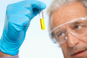 Scientist examining test tube of yellow liquid  close-upの写真素材 [FYI03633405]