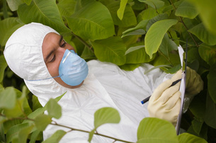 Worker in mask and suit writing on pad amongst plantsの写真素材 [FYI03633705]